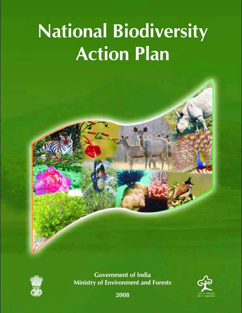 National biodiversity strategy and action plan oman